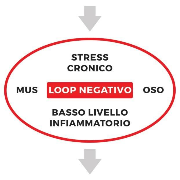 loop negativo